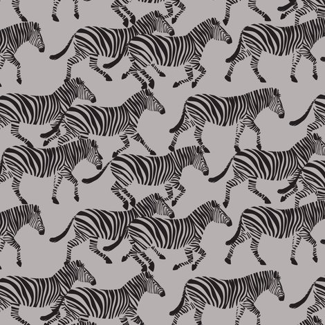 Rmore-zebra-color-options-01_shop_preview