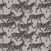 Rmore-zebra-color-options-01_shop_thumb