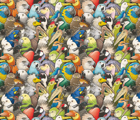 Endangered Birds fabric by maratus_funk on Spoonflower - custom fabric