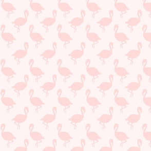Flamingos on Pale Pink, Tropical Birds, Coastal Florida, Subtle Monochrome Pale Pink