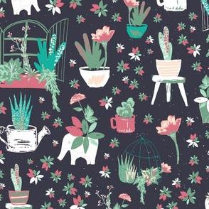 Succulents ll