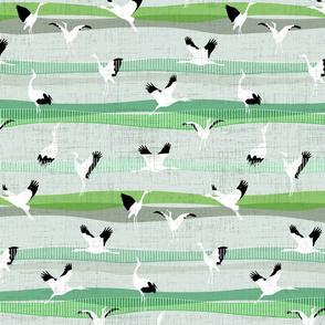 Green Grass Crane Dance