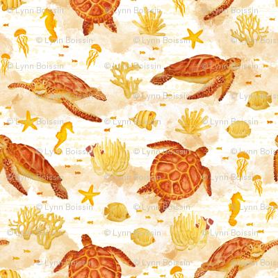 Hawksbill Sea Turtles
