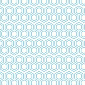 Perfectly Geometric 5