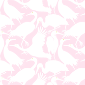 WHOOPING CRANES pink