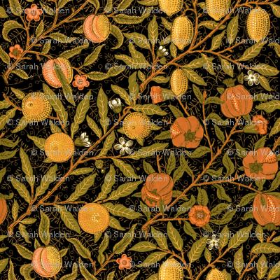 Fruit ~ William Morris ~ Citrus on Black