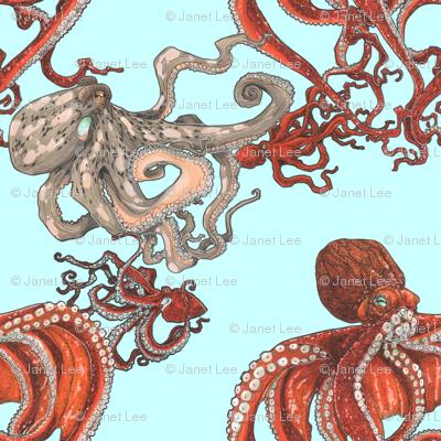 Octopus Party Light Aqua