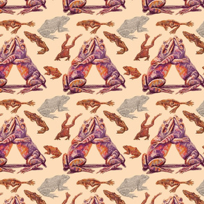 Frogs in peach