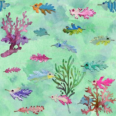 oak leaf fish