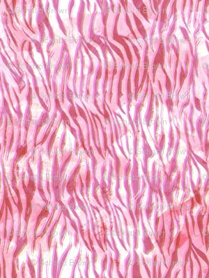 zebra glow hot pink