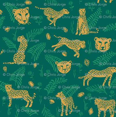Cheetahs and Riches
