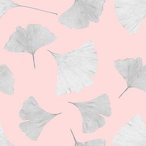 Pink ginkgo