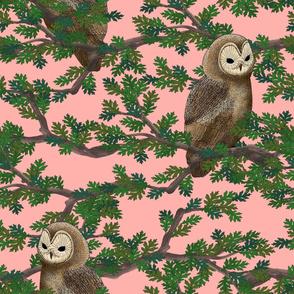 Woodland Owls (pink)