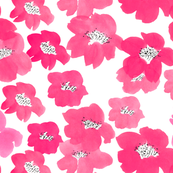 Camellias in Pink