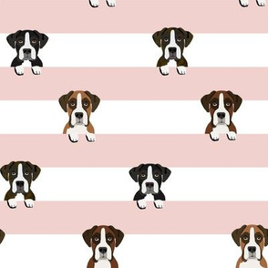 boxer stripes dog fabric pink