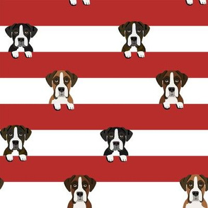 boxer stripes dog fabric red