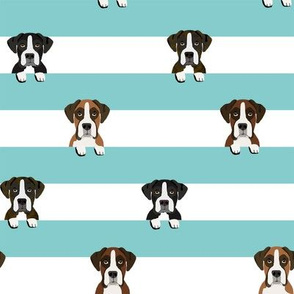 boxer stripes dog fabric blue