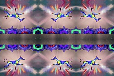 Rrrrrrrrrrrrainbow-hound-step-out_ed_ed_ed_ed_ed_ed_ed_shop_preview