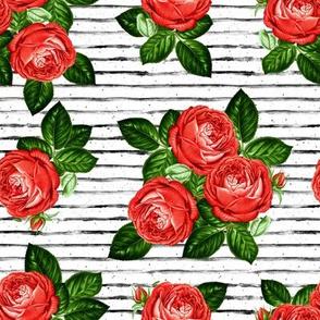"""8"""" Red Roses - Black Stripes"""