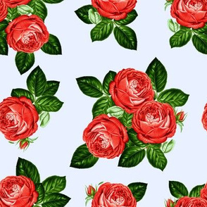 """8"""" Red Roses - Blue"""