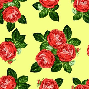 """8"""" Red Roses - Yellow"""