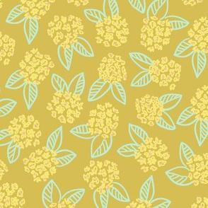Yellow Blooms on Mustard