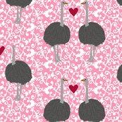 Rrolive-ostrich_shop_thumb