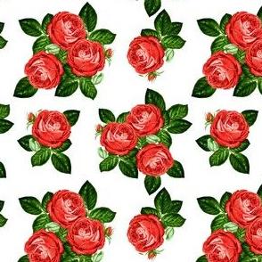 """4"""" Red Roses - White"""