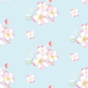 appleblossom blue