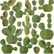 Cacti on Cream