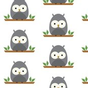 Rrbaby-owl_shop_thumb