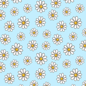 Daisies on pale blue