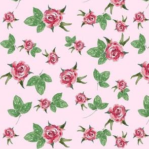 In my Rose Garden