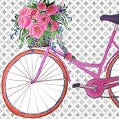 Rr2_bikes_on_grey2_shop_thumb