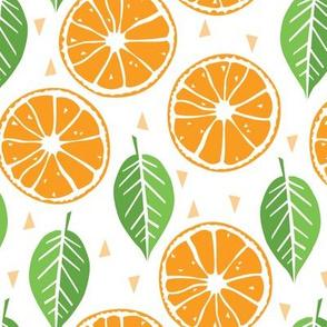 orange-slices-and-leaves