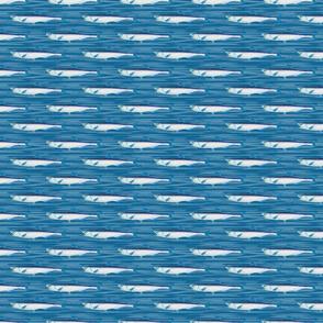 Fish on Blue