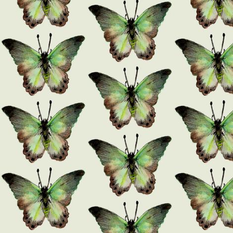Painted Moth 2 fabric by jadegordon on Spoonflower - custom fabric