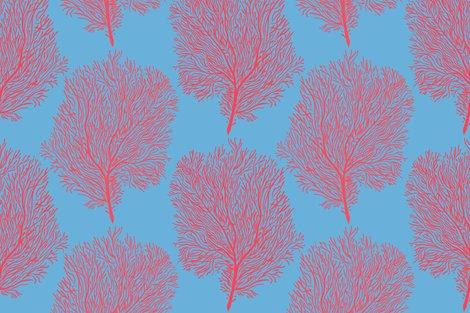 R1_fan-corals-maya-blue_shop_preview