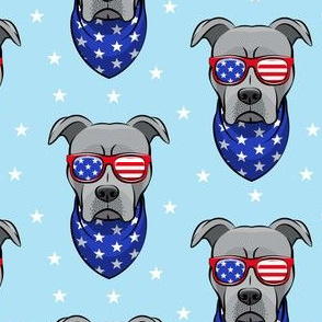 patriotic Pit Bull on blue