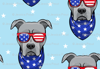 (small scale) patriotic Pit Bull on blue
