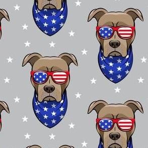 patriotic Pit Bull on grey