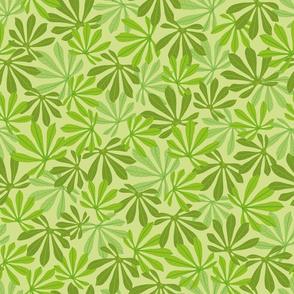 Manioc Leaves