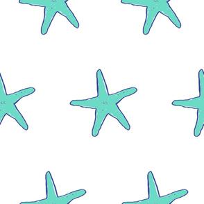 large starfish on white