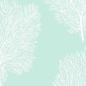 White Fan Corals (mint)