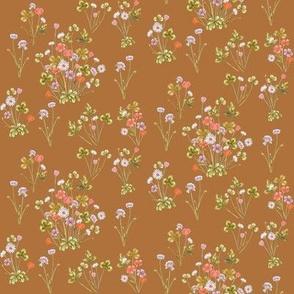 Meadowsweet Autumn Orange