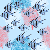 Banggai Cardinalfish Galore (ice blue)
