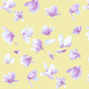 Tulip Magnolia (Yellow)