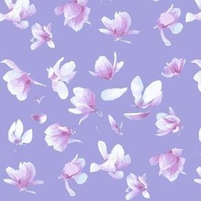 Tulip Magnolia (Violet Blue)