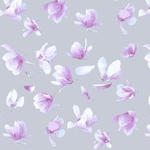 Tulip Magnolia (Grey)