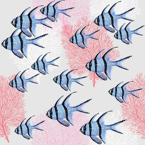 Banggai Cardinalfish Galore (silver)